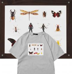 Ant Man Tshirts Ant-Man and the Wasp Printed T Shirts For Girl
